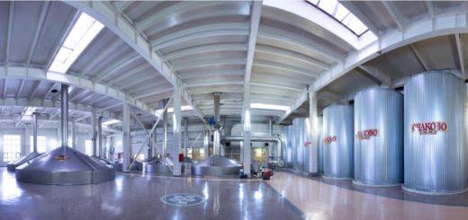Экспертиза безопасности оборудования на производстве