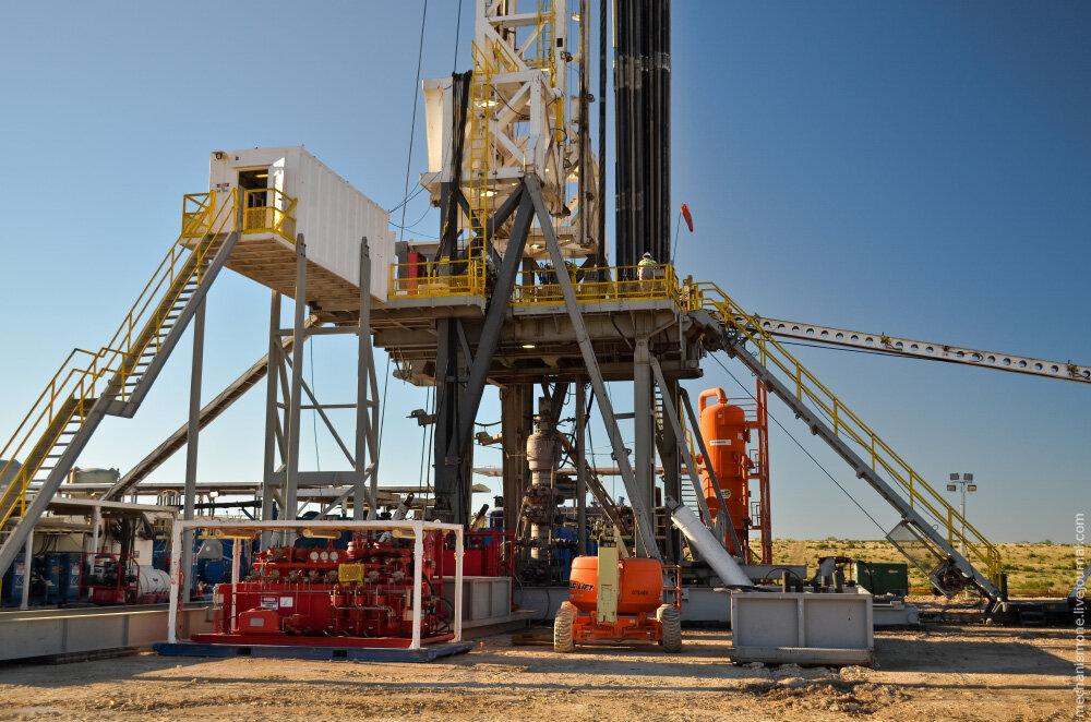 Экспертиза нефтедобывающего предприятия